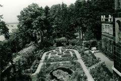 Gartenteich von oben